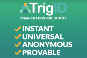 TrigID Ico review, TrigID ICO, TrigID ico analysis, TRIGID ico overview