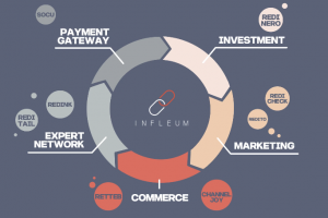 infleum ico review